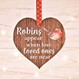Robins appear when loved ones Memorial Gift Remembrance Gift Christmas Xmas In Memory Decoration