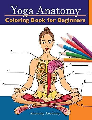 Yoga Anatomy Coloring Book for Beginners: 50+ Incredibly Detailed Self-Test Beginner Yoga Poses Color workbook   Perfect Gift for Yoga Instructors, Teachers & Enthusiasts