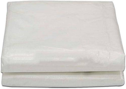 JIANFEI Bache Imperméable Résistant à La Pluie Filet D'ombrage Tente étanche Bord Renforcé Boutonnière En Métal, 22 Tailles Soutien Personnalisation (Couleur   Clear, Taille   4x7m)
