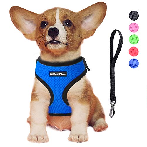 PetiFine Dog Harness with Car Safety Seat Belt, Adjustable Breathable Air Mesh Puppy Vest Harness for X- Small/Small/Medium/Large Dogs & Cats(XS, Blue)
