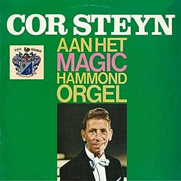 Aan Het Magic Hammond Orgel