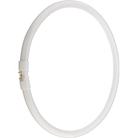 Bulbrite FC12T5//835-40 Watt T5 Circline 835K 12 Inch Diameter