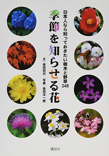 日本人なら知っておきたい樹木と野草248 季節を知らせる花の詳細を見る