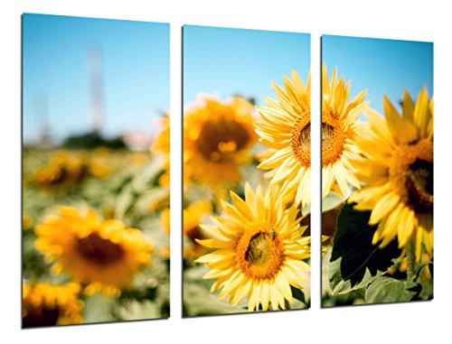 Cuadro Fotográfico Campo Girasoles Amarillos Tamaño total: 97 x 62 cm XXL