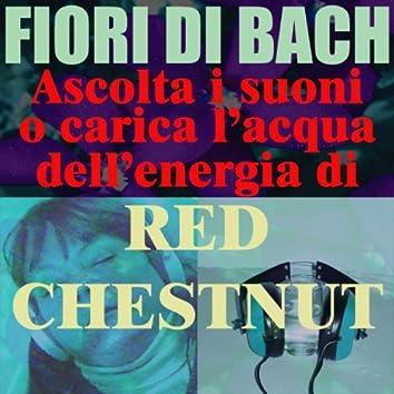 Red Chestnut - (Ascolta i suoni o carica l'acqua dell'energia di Red Chestnut)