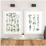 Cuadro de flores silvestres Lienzo Pintura Montessori Especies de flores Botánicos Educativos Carteles Imprimir Imágenes de pared Decoración de la habitación de los niños-50x70x2Pcscm Sin marco
