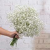 FEIGO 5 Piezas Plantas Artificiales Gypsophila, Flores Artif
