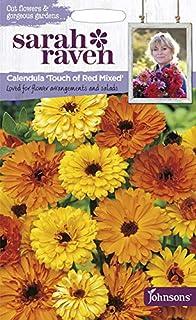 【輸入種子】 Johnsons Seeds Sarah Raven Cut flowers & gorgeous gardens Calendula Touch of Red Mixed サラ・レイブン・カットフラワーズ カレンデュラ(きんせん...