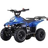 X-PRO 110cc ATV Quads Youth ATV Kids Quad ATVs 4 Wheeler...