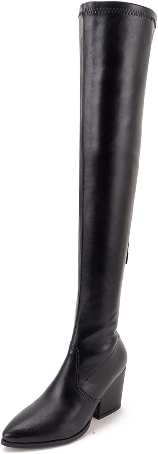 Ladola Womens Zipper Above-The-Knee Pointed-Toe Solid Urethane Boots