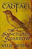 The Sanctuary Sparrow...image
