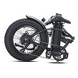 Immagine 2 gunai bici grassa elettrica 48v15ah