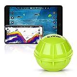 Eyoyo Buscador de Peces Bluetooth,Sondas de Pesca Detector Fishfinder Inalámbrica Portátil Compatible con Teléfonos iOS y Android para Muelle, Orilla, Barco, Pesca en Hielo