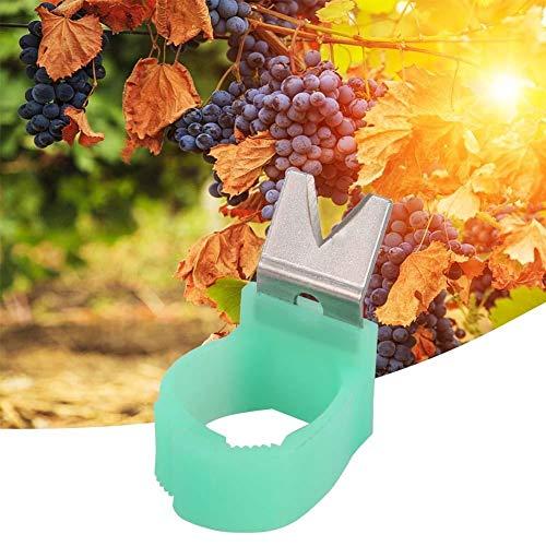 Giardino Pickers - 5Pcs / Set di Forma di v di Verdure della Frutta Picker Garden Picking Anello Raccolta Cut Strumento