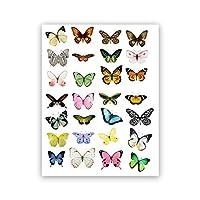 カラフルな蝶の昆虫のポスターとプリント自然科学の壁アート画像蝶の翼キャンバス絵画リビングルームの装飾フレームなし