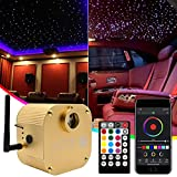 Twinkle 16W Bluetooth APP Control Fiber Optic Lights Star Ceiling Lighting Kits Music Sync for Home Indoor Car Starlight Headliner 550 pc 0.03in 13.1ft