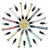 PietyPet Pet collari, 12 Riflettenti Rimovibili Subito Release Colorati con campanella e 12 Medagliette identificative Tubo per Gatto o Piccolo Cane