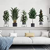 Green Plant Wall Decals Tropical Potted Plant Wall Stickers Removable DIY Murals for Living Room Bedroom Kitchen Hallway Home Decor (Plant3)