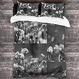 EollxC Make a Wish - Set di biancheria da letto matrimoniale da 200 x 170 cm, con 2 federe per cuscini, set copripiumino e 2 letti singoli