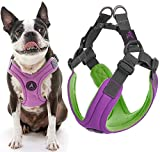 Gooby Dog Harness - Purple, Medium - Escape Free Memory Foam Step-in Small Dog Harness - Perfect on The Go Four-Point Adjustable - No Pull Harness for Small Dogs or Cat Harness