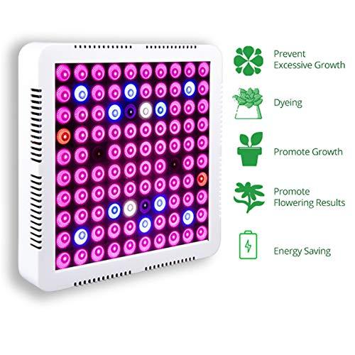 ZBHGF Grow Lights voor Kamerplanten 80W Volledige Spectrum Lampen Ophangende Plant Grow Light Panel voor Zaailingen En Zaad Starten, LED Groeiende Lamp Ophangset armaturen En Accessoires Inbegrepen