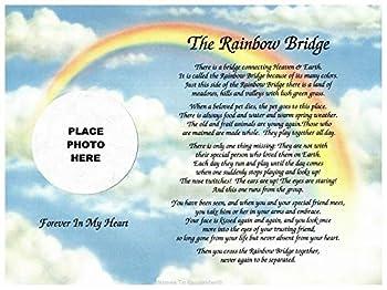 Cazual Creations in Memory of Pet Rainbow Bridge Memorial Poem Sentimental Gift for Loss of Dog Cat