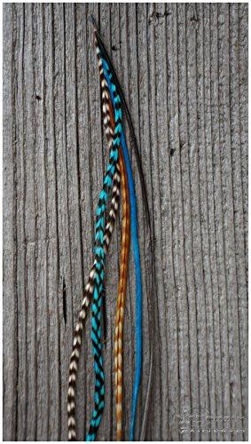 EasyIn Feder Extension (zwischen 20 & 30cm lang, Natur & Türkis)
