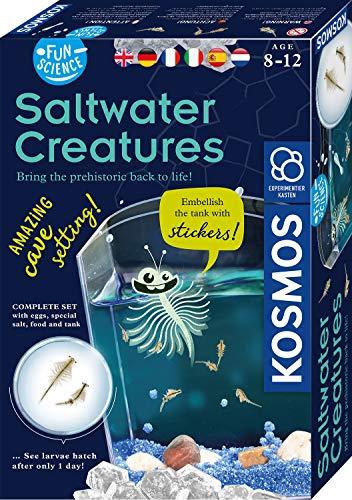 KOSMOS 7616632 616632 Fun Science Wuselnde Salzkrebse mehrsprachige Version (DE, EN, FR, IT, ES, NL) Erwecke die Urzeit zum Leben, Experimentierset für Kinder