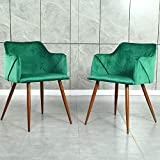 Velvet Chair Set of 2 Green Accent Chairs Modern Arm Chairs for Living Room