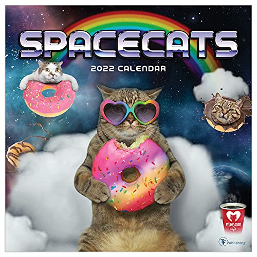TF PUBLISHING - 2022 Space Cats Wall Calendar - Home and Office Organizer - Large Monthly Grid for Planning and Schedules - Bonus Months - 12'x12'