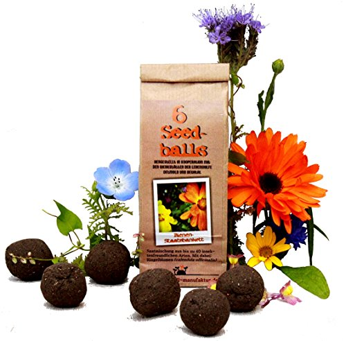 Die Seedball-Manufaktur Bienenstaatsbankett 6er Seedballs, Naturfarbene Kraftpapiertüte, 5,5 x 13 x 3 cm
