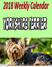 2018 Weekly Calendar Yorkshire Terrier