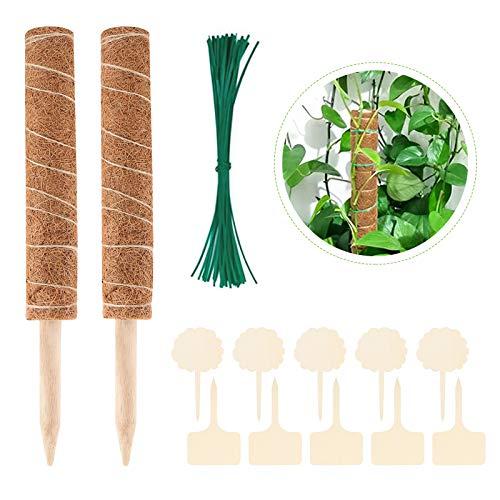 2 Stück 40cm Kokosstab, Pflanzstab Kokos Rankstab Rankhilfe Blumenstab mit 10 Pflanzenetiketten und 50 Garten-Kabelbinder, für Zimmerpflanzen, Haus Garten Kletterpflanze Erweiterung Der Pflanzenstütze