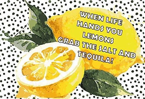 Lemons Zitronen and Tequila Blechschild Metallschild Schild gewölbt Metal Tin Sign 20 x 30 cm