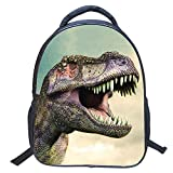 Kinderkarikaturbeutel14Zoll im Kindergarten Rucksack DinosaurierLModelleZZ9Dinosaurier