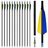 REAWOW Flecha de Pluma de 31 Pulgadas Flecha de Fibra de Carbono con Pluma de Pavo de 4 Pulgadas Diámetro Exterior de 7,6 mm para Objetivo de Caza Adecuado para Arco Recurvo Arco Compuesto 12 Pcs
