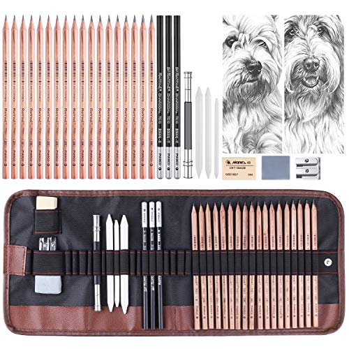 FURNIZONE Skizzen Zeichnen Bleistift Set, Drawing Pencils und Sketch Kit, 29er Komplettes Artist Kit Enthält Graphitstifte, Kohlestifte und einen löschbaren Papierstift für Anfänger