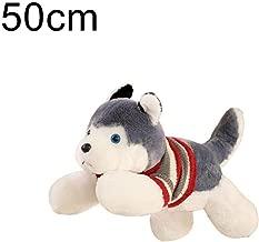 zaky bear toy