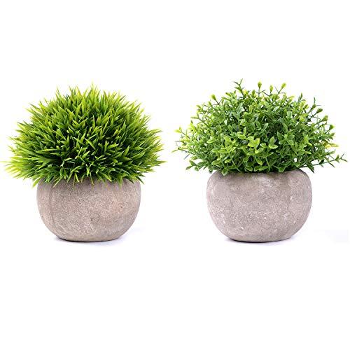 YQing Plantas Suculentas Artificiales Plastico Maceta Decorativas, Plantas Artificiales Verdes para Casa, Cocina, Jardin Hogar Oficina Decoracion (2 Piezas Hierba Verde)