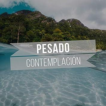 2019 Pesado Contemplación