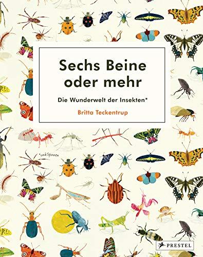 Sechs Beine oder mehr – Die Wunderwelt der Insekten und Spinnen