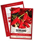 Serrano Pepper Seeds for Planting Heirloom Non-GMO Ancho Peppers Plant Seeds for Home Garden Vegetables Makes a Great Gift for Gardening by Gardeners Basics