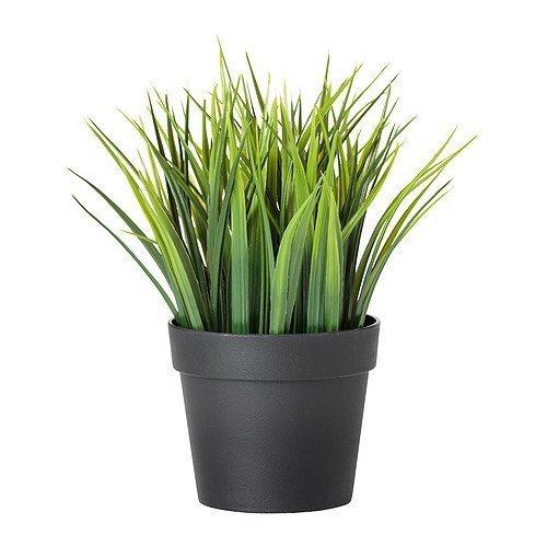 IKEA Fejka - Planta artificial en maceta (10,5 cm)