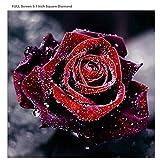 iMucci 5D - Taladro para pintura de diamantes, aspecto de bordado de punto de cruz con brillantes, para decoración de paredes. rosa (b)