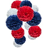 Paper Flower Tissue Pom Poms Party Supplies (red,Royal Blue,White,12pc)