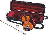 ヤマハ YAMAHA Braviol(ブラビオール) バイオリンセット V10SG