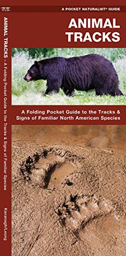 Animal Tracks A Folding Pocket Guide To The Tracks Signs Of Familiar North American Species A Pocket Naturalist Guide