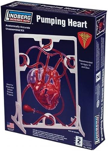 Lindberg 71316 - Pumpendes Herz