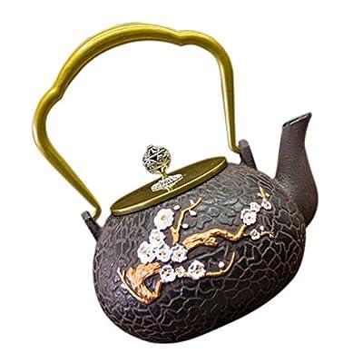 Sharplace Théière en Fonte Thé Bouilloire avec Tetsubin Japonais Cadeau