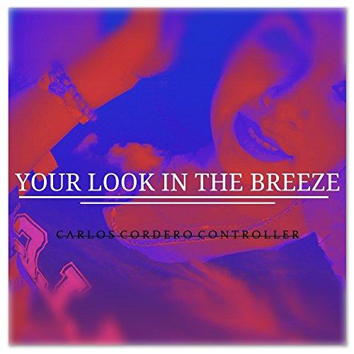 Your Look in the Breeze (Radio Edit)